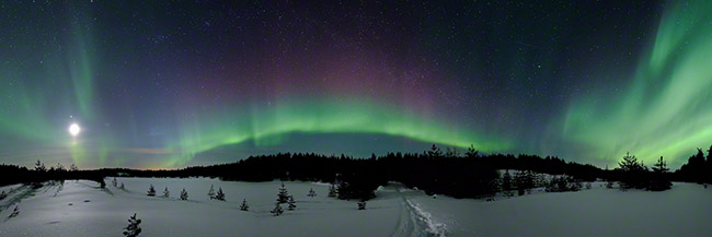 Northern lights in winter