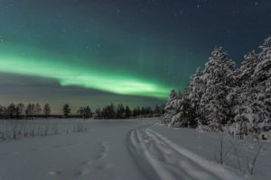 Aurora borealis in winter